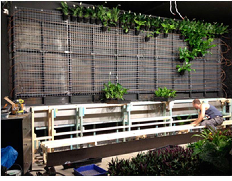 Вертикальное озеленение каркас своими руками